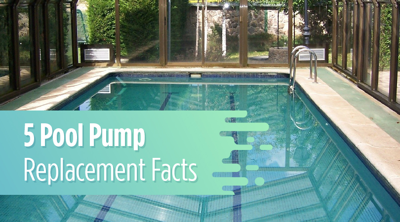 5 Pool Pump Replacement Facts