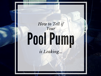 How to tell if your Pool Pump is leaking